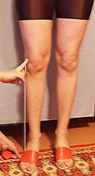 Вк — высота колена